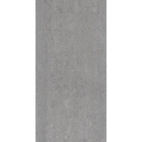 Lounge Light Grey Polished 600 x 300mm