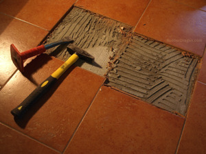 The Guide To Removing Tile Or Wood Flooring And Internal Walls ...
